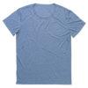 stedman-9850-meeste-t-sark-shirt-oversized-pikem-david-vana-vintage-blue-sinine-sublimatsiooni-trukk