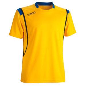 PANZERI_Premier(M)yellow-kollane-royal-blue-kuninglik-sinine_kuumkile_trükk
