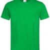 Stedman-ST2000-Unisex-Puuvillane-T-Särk-KellyGreen-roheline-trükiga